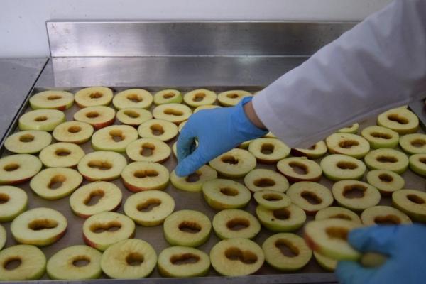 aranjarea-merelor-pentru-deshidratare-horting-bucuresti4BC1010D-5362-0063-CC58-A4D9853FF815.jpg
