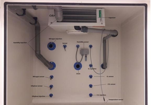 prezentarea-senzorilor-din-celulele-cu-atmosfera-controlata07A7CB2F-2872-FA26-7409-7F0463265857.jpg